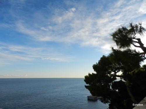 1-cote d'azur decembre 2012 119.jpg